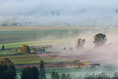 Fraser Valley at foggy sunrise