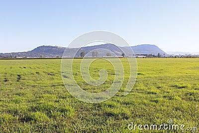 Fraser Valley Grassland