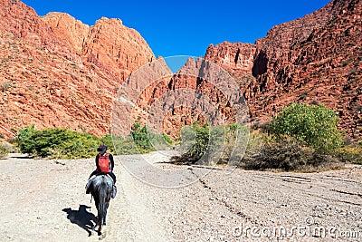 Frau, die ein Pferd reitet
