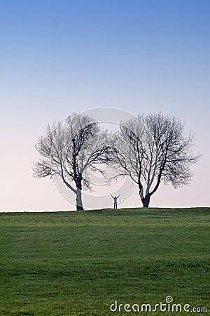 Frau und Bäume