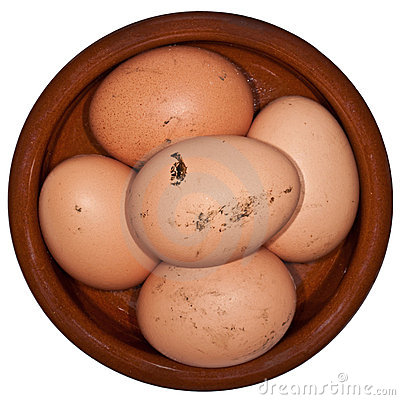 Free Free Range Eggs Royalty Free Stock Image - 19703576