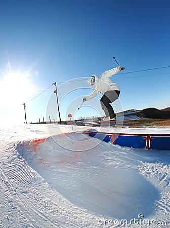Free skiier