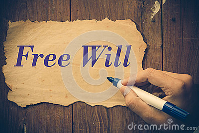 free will writing papers