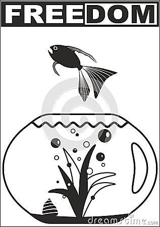 Freedom - Fish