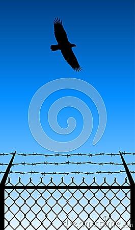 Freedom-flight