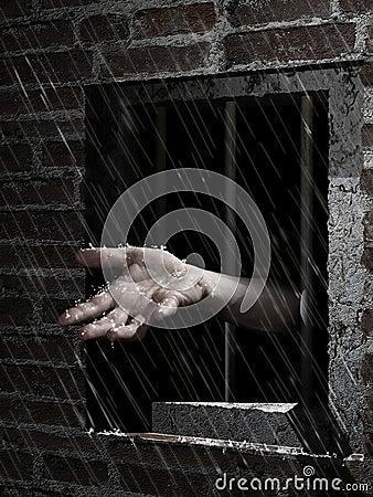 Freedom rain Stock Photo