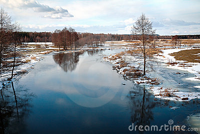 Freezing woody river