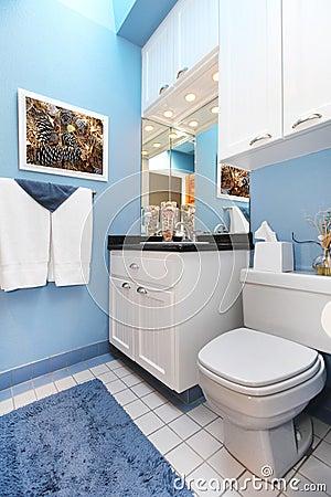 Fregadero y tocador blancos del cuarto de baño del wnad azul ...