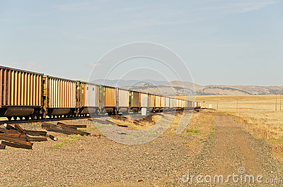 Freight Train and Ties