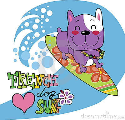 French bulldog loves surf