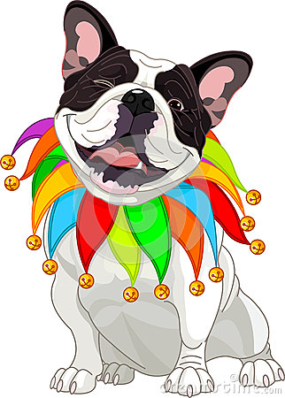 French bulldog wearing a colorful collar