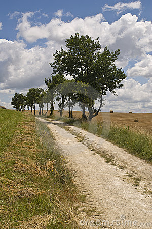 French country lane