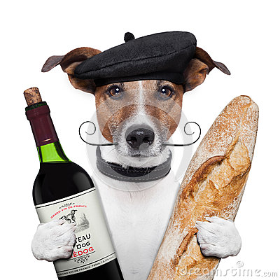 Free French Dog Wine Baguete Beret Stock Image - 26562361