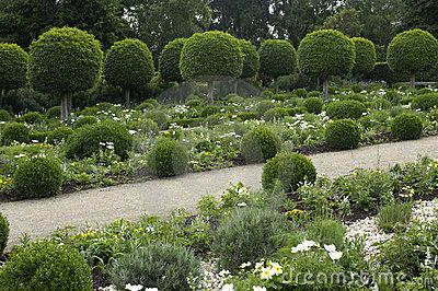 French Formal Garden Stock Image Image 11399911