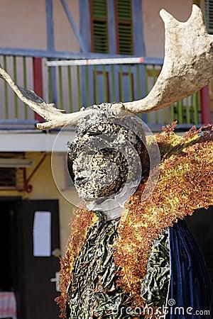 French Guiana's Annual Carnival February 7, 2010