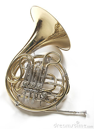 French horn on white