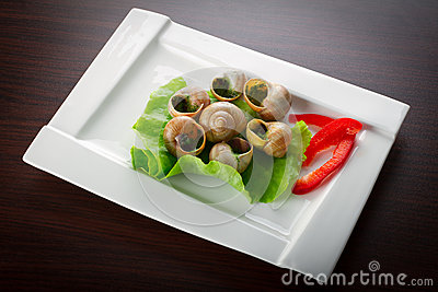 French snails in garlic butter on the plate