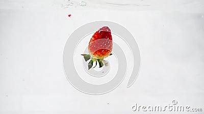 Fresas con hojas sumergidas en el agua a cámara lenta sobre un fondo blanco aislado almacen de metraje de vídeo