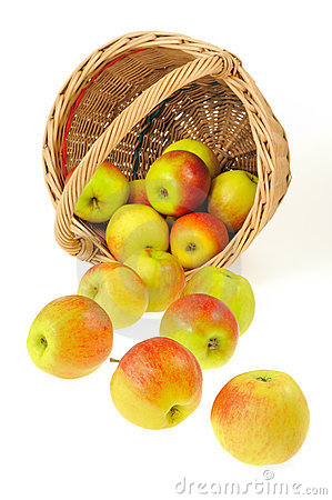 Fresh apples spilling out of basket - isolated on