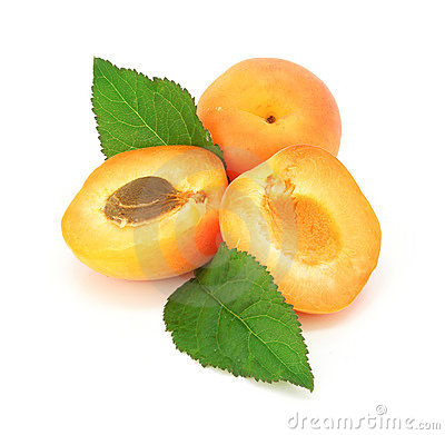 Fresh apricot fruits cut isolated