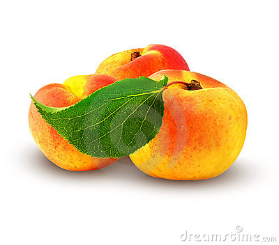 Fresh apricot with green leaf