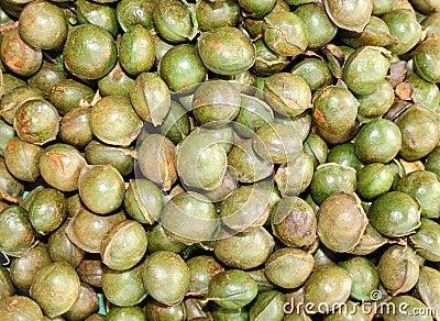 Fresh Archidendron Jiringa Nielsen or Look Neang