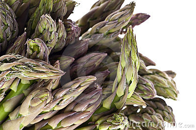 Fresh Asparagus Detail