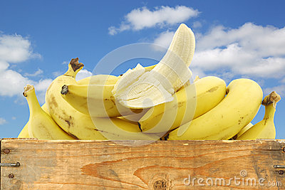 Fresh bananas and a peeled one