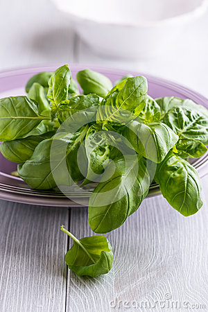 Fresh basil on a purple plate