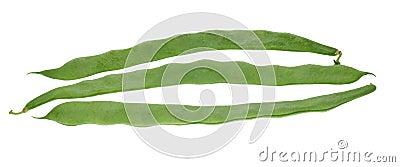 Fresh beans isolated