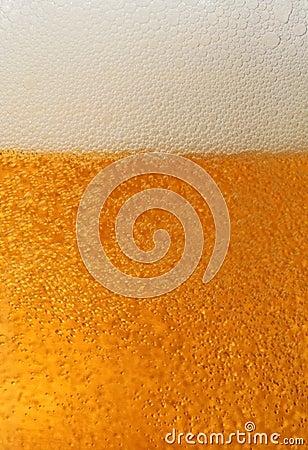Fresh beer macro