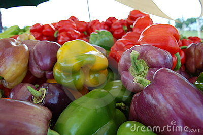 Fresh Bell Peppers for Sale (Yellow, Green, Purple, Red)