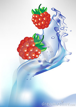 Fresh berry in water splash