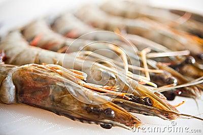 Fresh and big raw tiger prawn