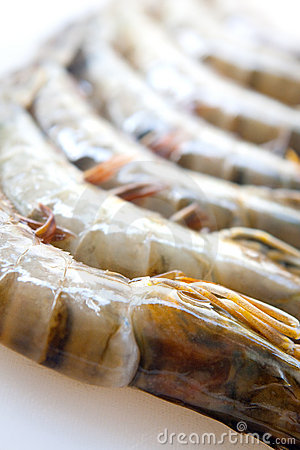 Fresh and big raw tiger prawn
