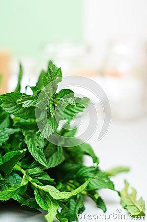 Fresh bio mint