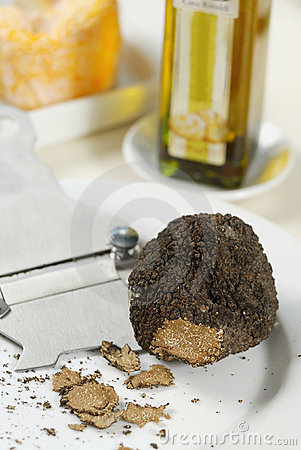 Free Fresh Black Truffle Royalty Free Stock Photo - 8836265