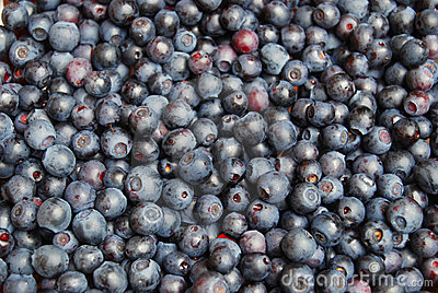 Fresh blueberries background