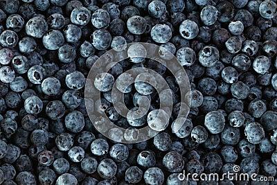 Fresh blueberries, group of blueberries Stock Photo