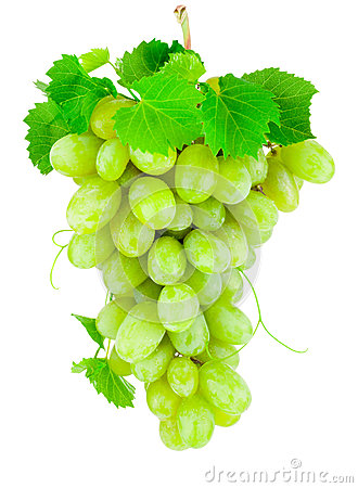 Free Fresh Bunch Of Green Grapes Isolated On White Background Royalty Free Stock Photography - 60151827