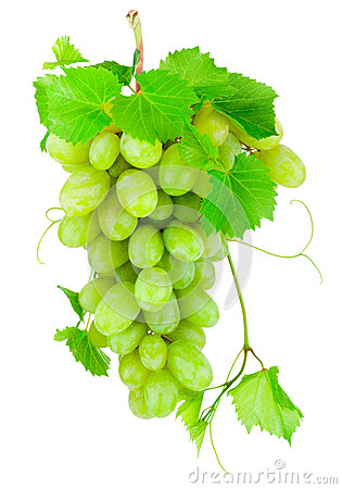 Free Fresh Bunch Of Green Grapes Isolated On White Background Stock Photo - 62244690