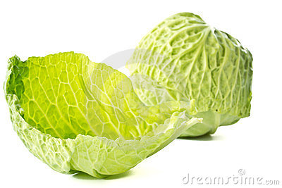 Fresh cabbage early