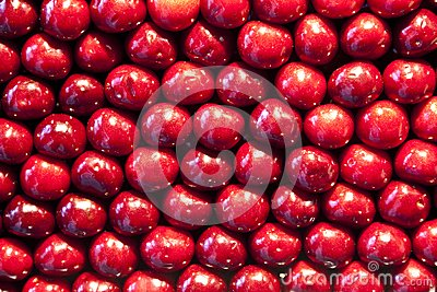 Fresh cherries are stapled in pattern