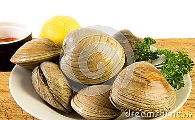 Fresh cherrystone clams