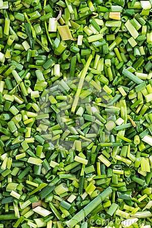 Free Fresh Chive Backround Royalty Free Stock Photography - 37949467