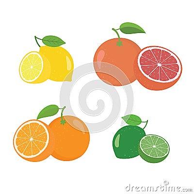 Free Fresh Citrus Fruits Whole And Halves 4 Icons Square With Orange Grapefruit Lemon Lyme Stock Image - 110567031