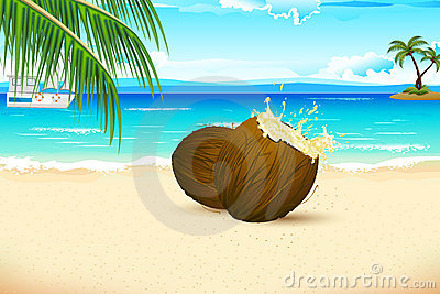 Fresh Coconut on Sea beach