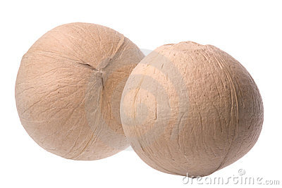 Fresh Coconuts Isolated