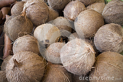 Fresh coconuts at open air market