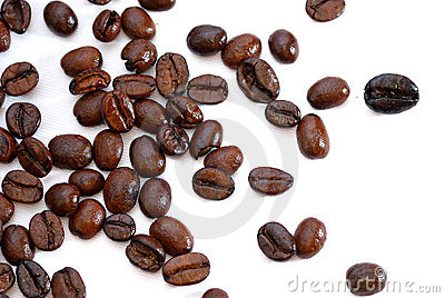 Fresh Coffee Bean Series 03